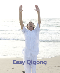 Easy Qigong Class