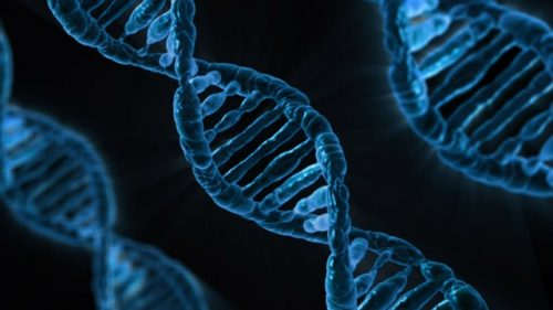 DNA Activation - ThetaHealing - Theta Healing - Bellevue, WA